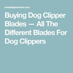 Buying the best dog clipper blades requires knowledge. Use our FREE guide to buy the best blades for dog grooming clippers (including Wahl, Andis, Oster. Dog Grooming Clippers, Cavachon, Blade, Dogs, Pet Dogs, Doggies, Llamas