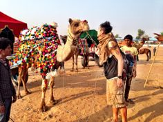 Home to one of the most amazing festivals in the world, the Pushkar Camel Festival.