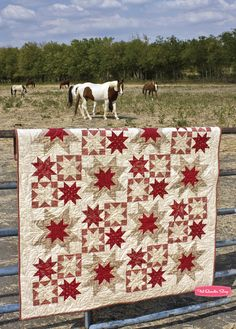 Gorgeous red and white star quilt - nice background as well!
