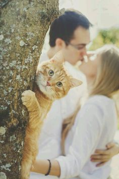 Cute way to include your cat into your engagement shoot (just in case you thought you didn't have enough pictures of them to start with)