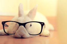 Hipster Bunny - dicas de livros para a Páscoa