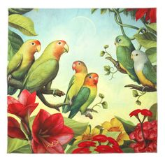 Lovebirds of Africa Knot Wrap - Nothing shouts love from the rooftops like a couple of lovebirds. This gorgeous Knot-Wrap has s stunning design of Fischers lovebirds from Tanzania, grey-headed love birds from Madagascar, and peach-faced lovebirds from the Namib Desert.