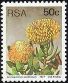 Stamp Collection Value, Flower Stamp, Vintage Stamps, African Animals, African History, Stamp Collecting, Vintage Decor, Bonsai, South Africa