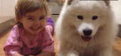 This gif is too adorable to put into words