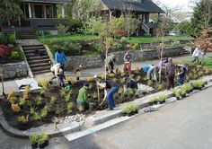 Green Streets has become a community affair in Portland, Ore.,