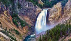 Yellowstone National Park Animals | National Park Lower Falls Yellow Stone Hdwallpaper | Wallpapers HD