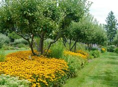 Hometalk :: Stan Hywet's Three-Acre Great Garden ~ Part 1