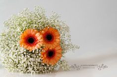 Bridesmaid Bouquet made of white gypsophila and coral mini gerberas.