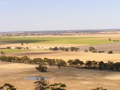 The Wimmera, looking out over the wheat fields from Mount Arapiles.