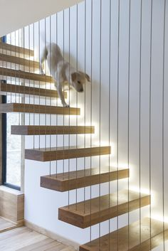 Architecture: Unique Floating Staircase With Wooden Step And Wire Railing Design Ideas: Great Water Mill Restoration in North Wales, The Berwyn Mill Interior Stair Railing, Stair Railing Design, Stair Handrail, Staircase Railings, Stairways, Staircase Ideas, Spiral Staircases, Stairs To Heaven, Escalier Design