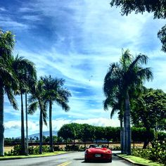Boxster on Maui