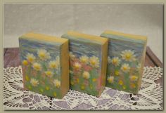 cold-process soap - daisies