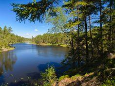 Tresticklan Nationalpark in Schweden