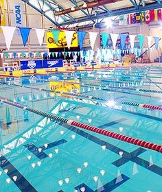 Nassau County Executive Ed Mangano has announced upcoming events at The Nassau County Aquatic Center in East Meadow! Take a peek below at the full Summer schedule of classes!