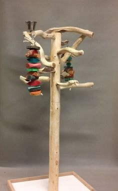 AFL2 Manzanita Activity Center Parrot Tree Bird Stand Toy Play Gym lik Java Wood