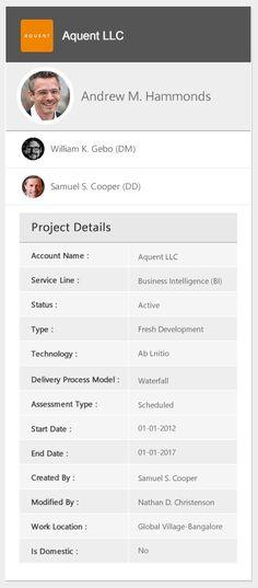 Widget Project details