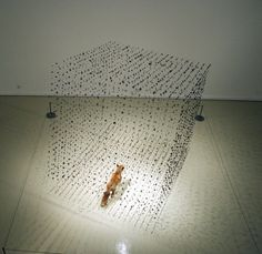 Claire Morgan creates unique sculptures that appear to be floating in the air, motion is combined with stillness for a dramatic effect. Claire Morgan, Morgan 4, Damien Hirst, Photo Projects, Installation Art, Art Installations, Hanging Art, Community Art, Tag Art