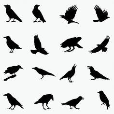 Vogel Silhouette, Crow Silhouette, Bird Silhouette Tattoos, Black Crow Tattoos, Crow Logo, Crows Drawing, Crow Flying, Rabe Tattoo, Crow Tattoo Design