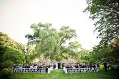 Brooklyn Botanical Garden: Ceremony by the willow tree