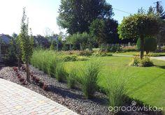 Wizytówka - Moja codzienność - Forum ogrodnicze - Ogrodowisko