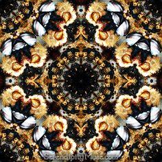 Day 33: Kaleidoscope 1