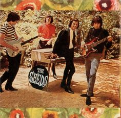 See The Seeds pictures, photo shoots, and listen online to the latest music. 60s Music, Music Film, 60s Rock, Punk Rock, Psychedelic Bands, Sports Wagon, Play That Funky Music, T Shirt Image, Him Band