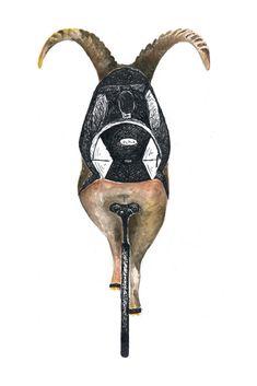 Steinbock auf Trans-Alp-Tour #Steinbock #Mountainbike #Fahrrad #Illustration #Aquarell #AnimalArt #watercolor Friends, Illustration, Capricorn, Bike, Watercolor, Boyfriends, Illustrations