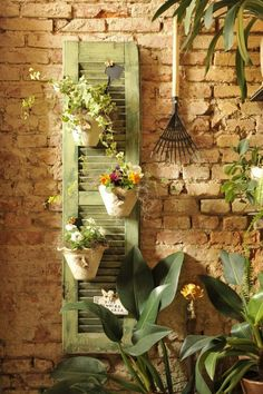 Flowers in pots attached to a shutter on a brick wall