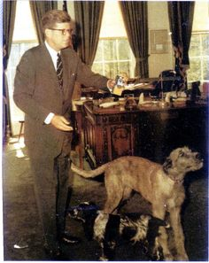 The Kennedys had an Irish Wolfhound named 'Wolf'and an Irish Cocker Spaniel named 'Shannon'