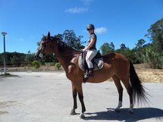 Aqui vais ver as minhas fotos de equitação