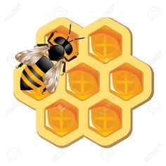 http://previews.123rf.com/images/alexm/alexm0910/alexm091000007/5670929-Honeycomb-and-Working-Bee-Stock-Vector-bee-hive-honey.jpg