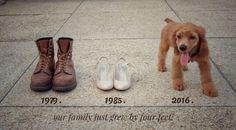 Puppy announcement
