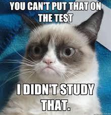 grumpy cat pic @Kaytlin Gregory Stegall