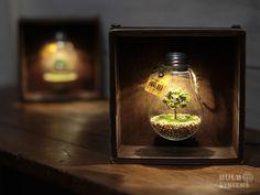 箱・電球ランプ 木陰のひつじ
