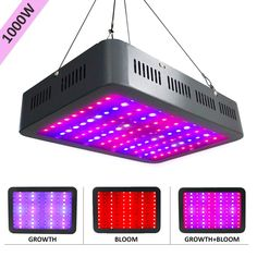 Best 100w Led Grow Light Review For Your Indoor Plants