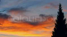 Timelapse of colourful sunset sky   Video   Colourbox on Colourbox