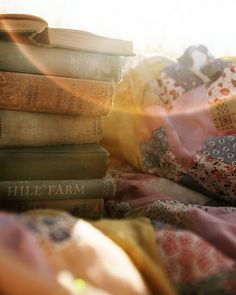 Books, quilt and sunshine! What more can a girl ask for?