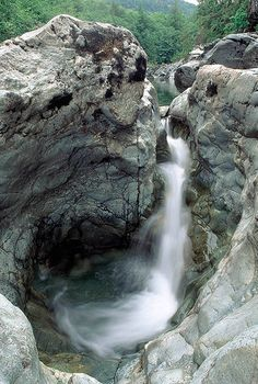 The world famous Sooke Potholes on Vancouver Island, BC Places Around The World, Oh The Places You'll Go, Places To Travel, Places To Visit, Beautiful Waterfalls, Vancouver Island, Canada Travel, Island Life, Beautiful Places