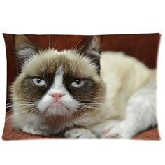 Tt-shop Soft Zippered Pillowcase Pillow case Cover 20*30 Inch (Twin sides) Grumpy Cat Pattern Fashion Design -- See this awesome image  : DIY : Do It Yourself Today
