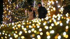 13. November, #Japan: In der japanischen Hauptstadt #Tokio wurde bereits die #Weihnachts-Dekoration hervorgeholt. Im Bezirk #Shinjuku leuchten bis zum 25. Dezember rund 370000 Lämpchen. (Foto: dpa)