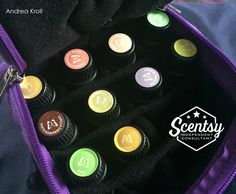 Assorted Scentsy Oils in a Jane's Jewels NZ Oil Case
