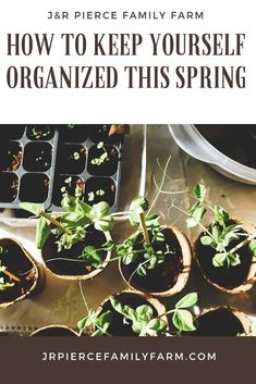 Organization is the key to gardening success. Here's how to do it - one step at a time. Organization is the key to gardening success. Here's how to do it - one step at a time.