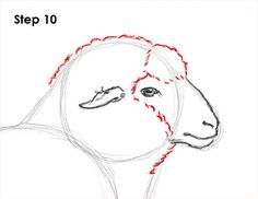 Learn how to draw a sheep with this how-to video and step-by-step drawing instructions. A new animal tutorial is uploaded every week, so check beck soon for new tutorials! Animal Sketches, Animal Drawings, Drawing Sketches, Art Drawings, Sketching, Sketch Inspiration, Painting Inspiration, Sheep Ears, Sheep Drawing