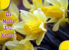 La multi ani, Narcis! Vegetables, Vegetable Recipes, Veggie Food, Veggies