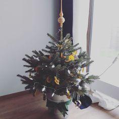 Dárečky pod ním sice ještě chybí ale Ježíšek už na nich pilně pracuje. My z Lokoko.cz vám přejeme krásné a pohodové Vánoce plné dobrého jídla milých setkání i dárků protože ty k tomu prostě patří. A třeba mezi nimi najdete i nějaký od nás