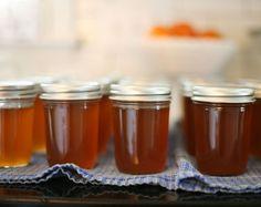 Homemade Scuppernong Jelly