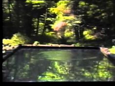 Bill Viola - Reflecting Pool - YouTube