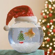 How To Decorate Your Aquarium For The Holidays | Petslady.com