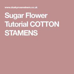 Sugar Flower Tutorial COTTON STAMENS