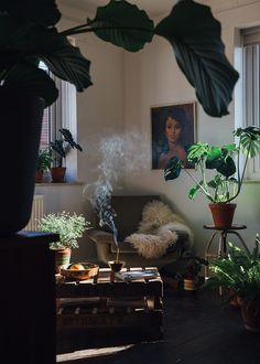 Making a Bohemian living space. Plants, light and incense x x